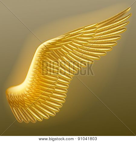 Illuminated gold wing of a bird with detailed feathers.