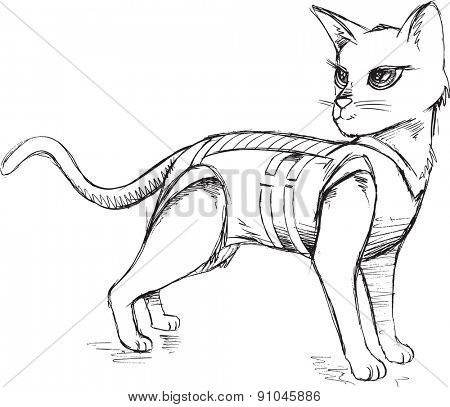 Doodle Sketch Cat Vector Illustration Art