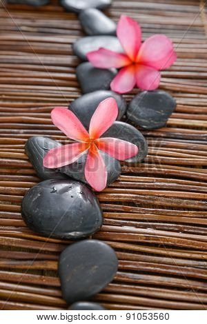 Beautiful pink frangipani orchid with black stones on mat