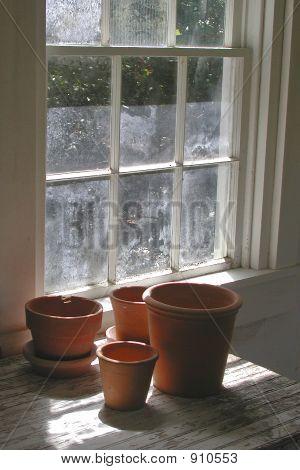 Window Stilllife 1