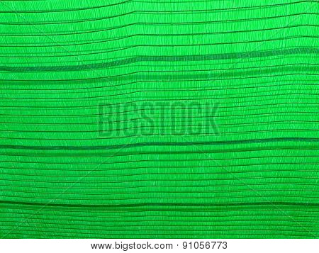 Green Sun Shading Net