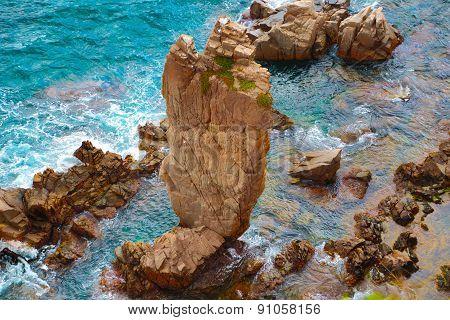 Wild Coast In Costa Brava .