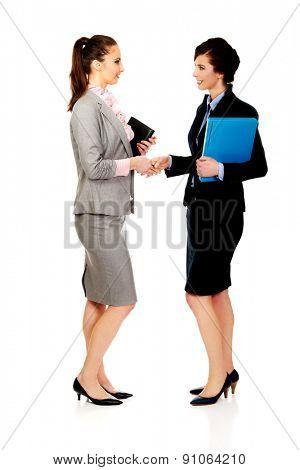 Beautiful two businesswomen giving handshake.