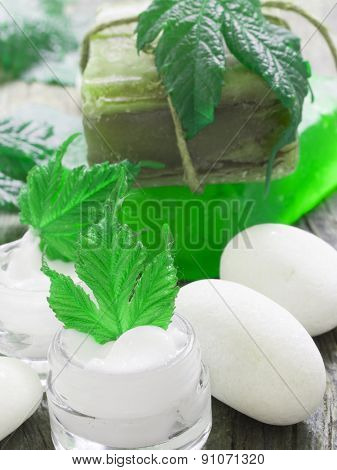organic facial cream with fresh leaves