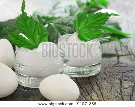 facial cream with fresh leaves