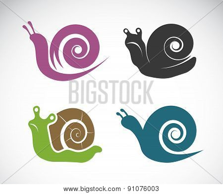 Vector Image Of A Snail On White Background