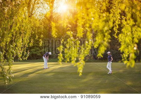 Senior golf player couple putting on green at sunset, with beautiful tree in foreground.