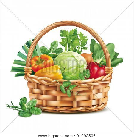 Basket with vegetables isolated on white. Vector illustration.