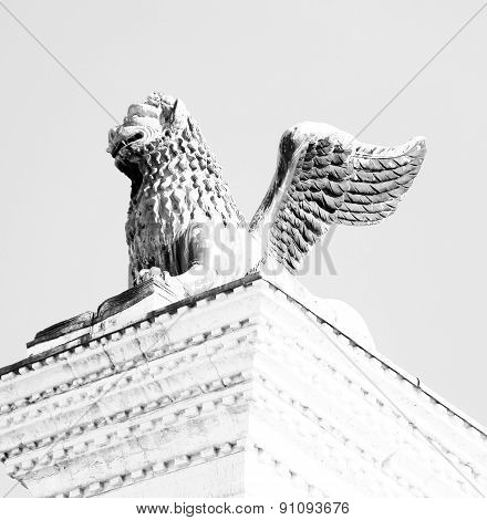 Winged Lion Statue In Piazza San Marco In Venice