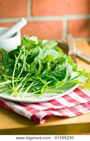 fresh arugula leaves on kitchen table