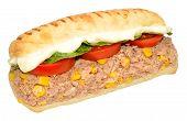 stock photo of sweet-corn  - Tuna fish and sweet corn Panini sandwich isolated on a white background - JPG