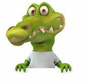 image of crocodiles  - Crocodile with a white tshirt - JPG