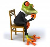 stock photo of amazonian frog  - Fun frog - JPG