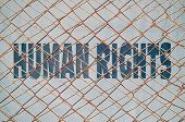 foto of racial discrimination  - Concept about the guaranteed human rights with text written under a wire fence - JPG