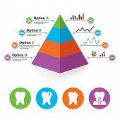 image of teeth  - Pyramid chart template - JPG