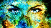picture of female peacock  - pair of beautiful blue women eyes looking up mysteriously from behind a small rainbow colored peacock feather texture collage with cracklee structure - JPG