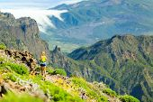picture of canary  - Young woman running or power walking in mountains on sunny summer day. Beautiful natural landscape and female runner jogging exercising outdoors in nature rocky trail footpath on La Palma Canary Islands