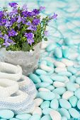 picture of booty  - baby booties and flowers on sugared almonds - JPG