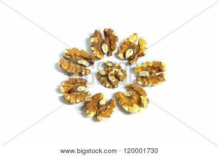 walnut seed nut cracked in half shape round group