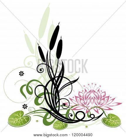Reed, lotus