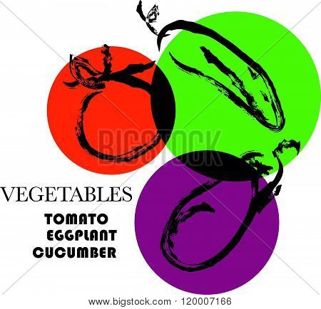 Vector hand drawn vegetables sketch. Artistic and flat food illustration. Good for magazine book or article illustration graphic print design.
