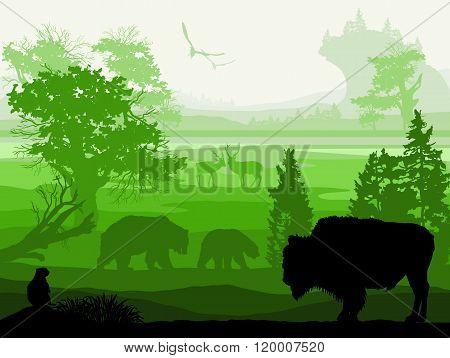 Beauty Of Nature With Wild Animals (musk Ox, Bear, Gopher, Deer, Bird)