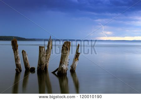 evening thunders and old snags on the lake, russian nature, lake and thunders