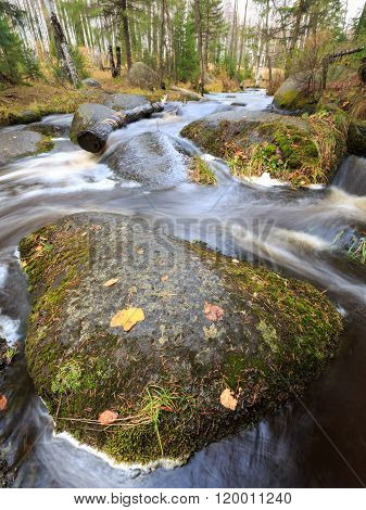 raging river in forest, autumn forest, russian nature