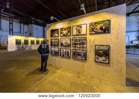 GRONINGEN THE NETHERLANDS - SEP 27 2015: Boy watching image at Photo exhibition Noorderlicht Data Rush in oude suikerfabriek Groningen.