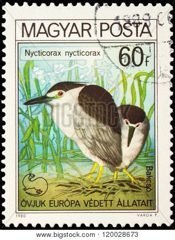 Night Heron (nycticorax Nycticorax) On Postage Stamp