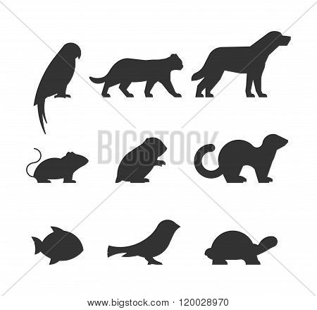 Vector Set Of Figures Of Pets.