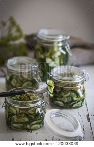Home made pickled cucumber in a jar of glass