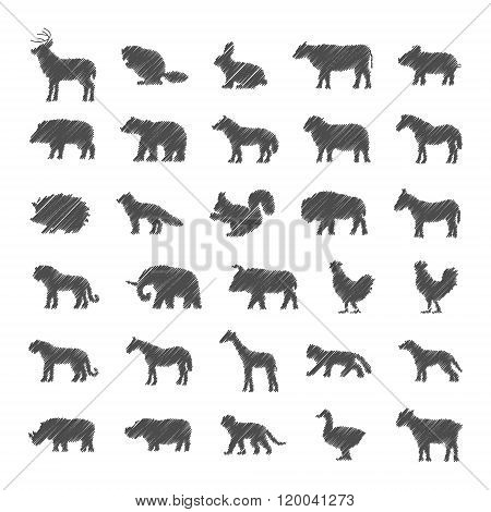 Vector Set Of Domestic Animals And Wild Animals.