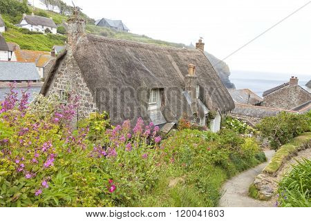 Traditional thatched roof stone cottage in fishing village in Cornwall