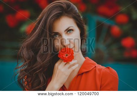 Close-up portrait of beautiful brunette woman with red rose in her lips. Toned image