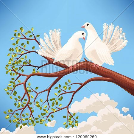 Two white doves on the branch