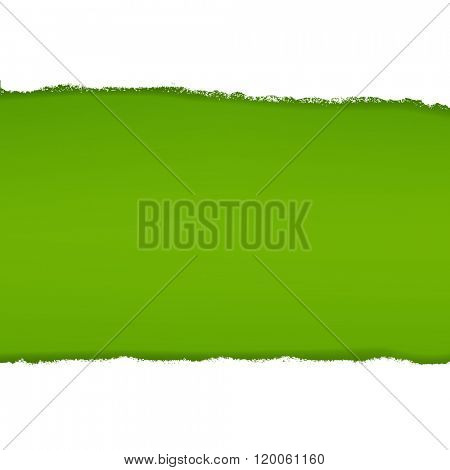 Green Background With Gradient Mesh, Vector Illustration