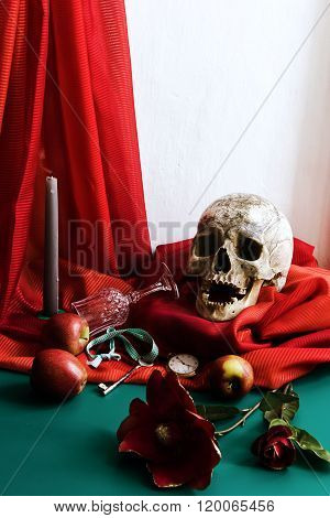 Still Life with Skull in the style of vanitas