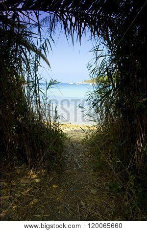 Beautiful landscape taken in Croatia on Stancica Vis island