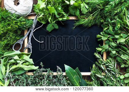 Many Garden Herbs And Copy Text Space, From Above