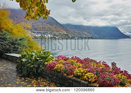 View of Lake Geneva, Alps and flowers, Montereux, canton of Vaud, Switzerland