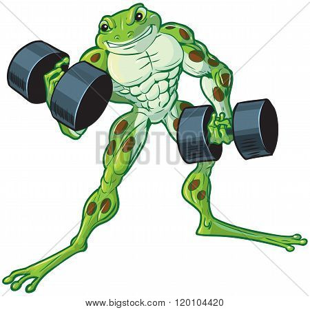 Muscular Cartoon Frog Curling Dumbbells