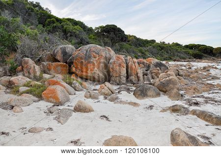 Dunes at Bunker Bay, Western Australia