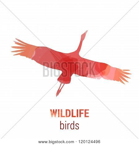 Wildlife banner - bird stork