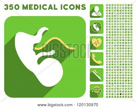 Embryo Cord Icon and Medical Longshadow Icon Set
