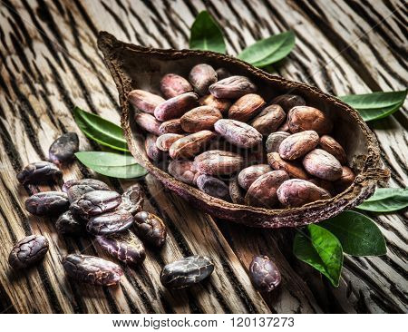 Cocoa pod and cocao beans on the wooden table.