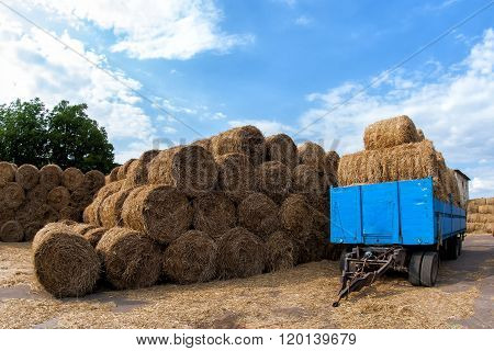 Trailer With Hay