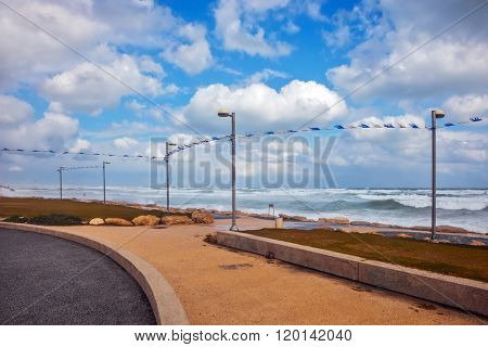 The famous promenade of Tel Aviv in stormy weather. The cat hid from the strong sea wind. The first day of January