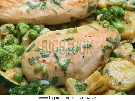 Pan-fried Tarragon Chicken with vegetables