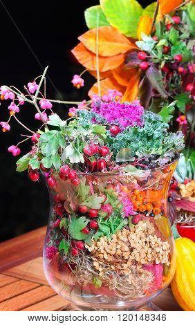 Ornamental Cabbage In Autumn Decoration
